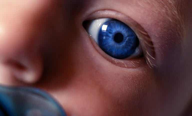 Jeg ser på deg mamma: Når den nyfødte oppdager deg
