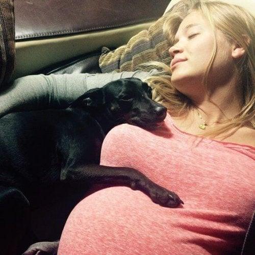Gravid kvinne og hund