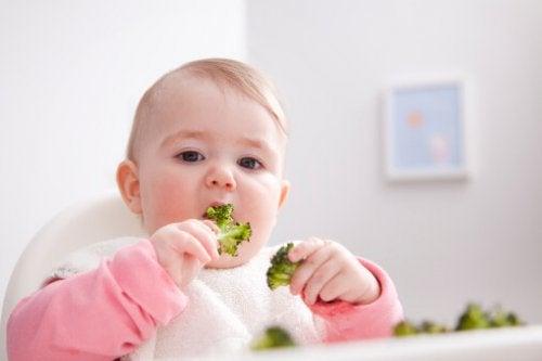 baby spiser brokkoli