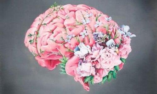 Hvordan en mors hjerne forandrer seg under graviditeten