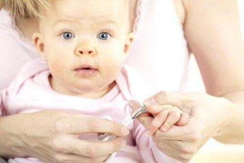 Klippe babyens negler for aller første gang