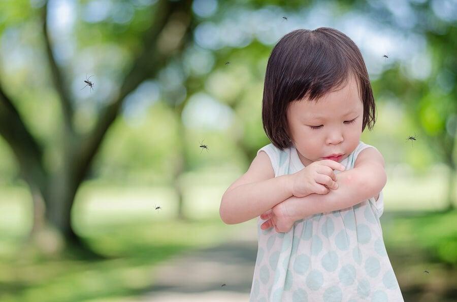 Hvorfor barnet ditt alltid får myggstikk