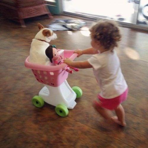 Småbarn leker med kjæledyr