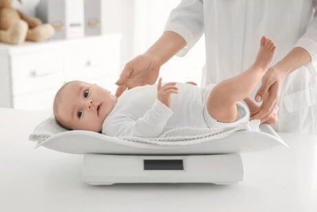 Din babys vektøkning måned etter måned