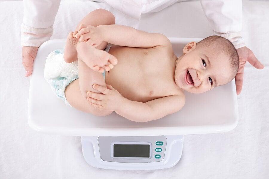 Din babys vektøkning måned for måned