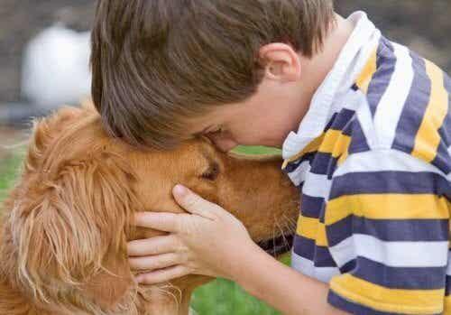 Fordelene ved å ha kjæledyr i hjemmet