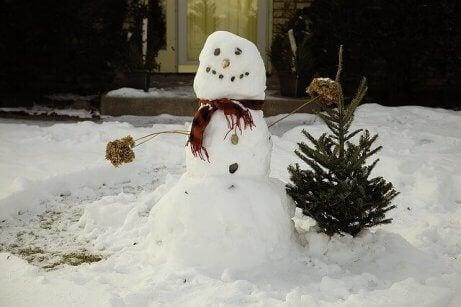 10 snøleker å leke med hele familien