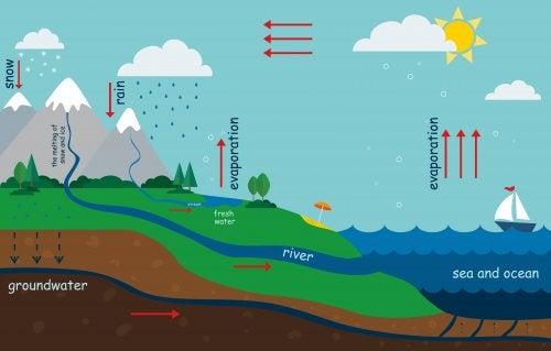 Hvordan forklare vannets kretsløp for barn