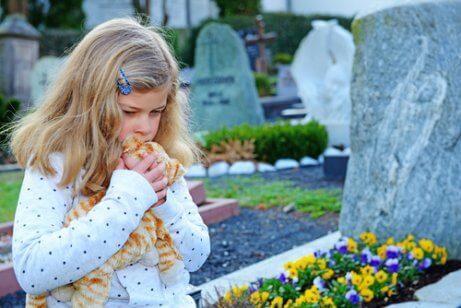 Hvordan hjelpe barn å forstå og møte dødsbegrepet