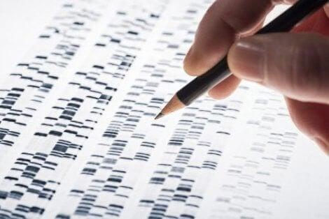 Prenatal genetisk testing: Kjennetegn og fordeler