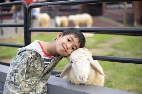 Gutt på en gård med en geit