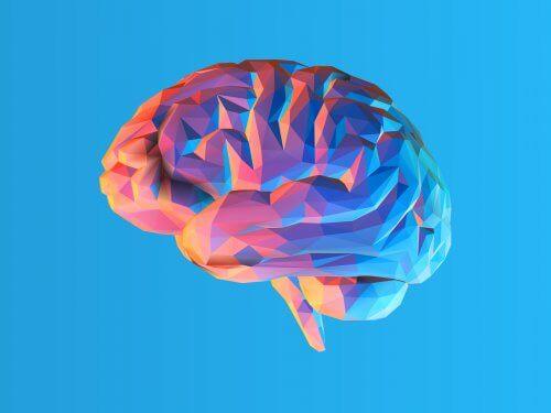 Teorien om kognitiv belastning for forbedret hukommelse