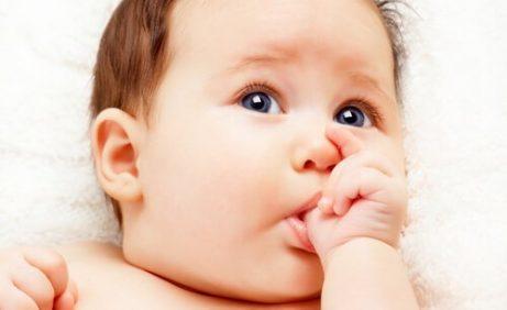 Sugerefleksen hos nyfødte barn