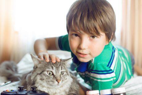 Ut av alle terapidyr valgte denne gutten en katt