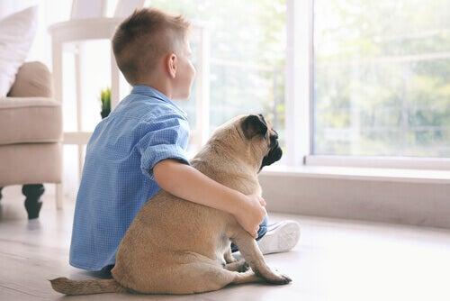 Hvordan terapidyr kan hjelpe barn