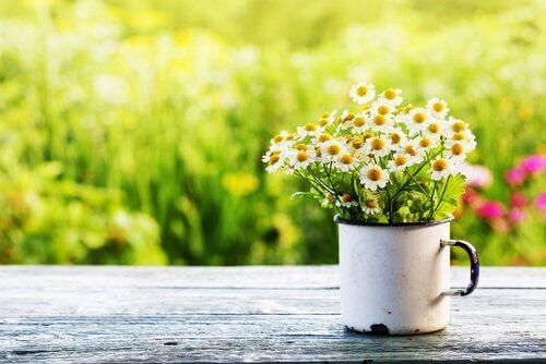 Vårlig asteni påvirker mange barn.