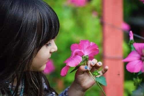 Botanikkundervisning for barn: Nyttige tips