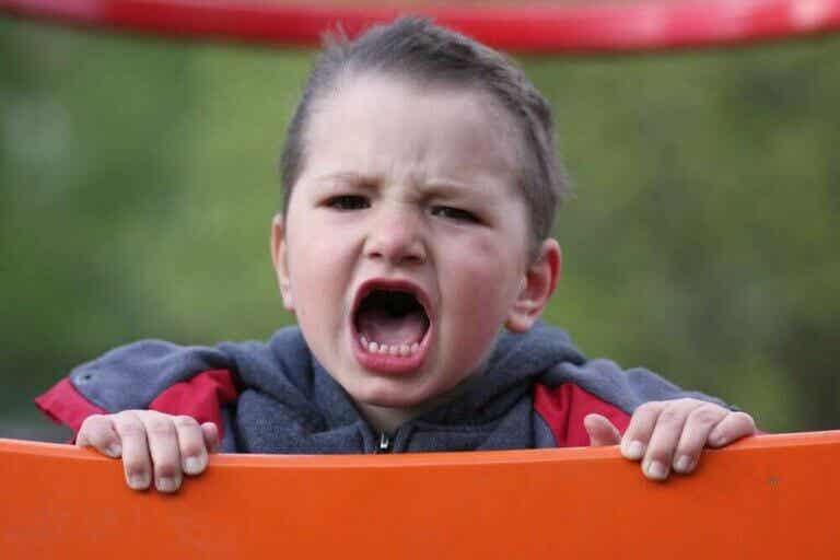Dårlig temperament er ikke synonymt med karakter
