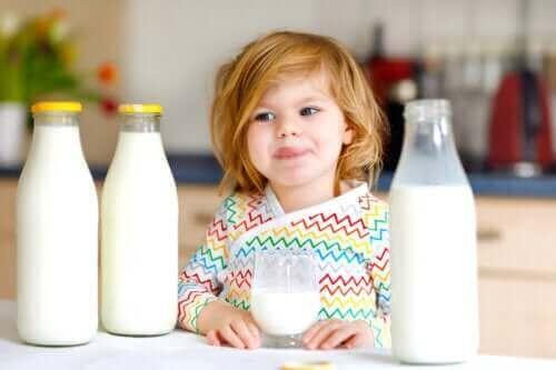 Kumelkproteinallergi hos barn