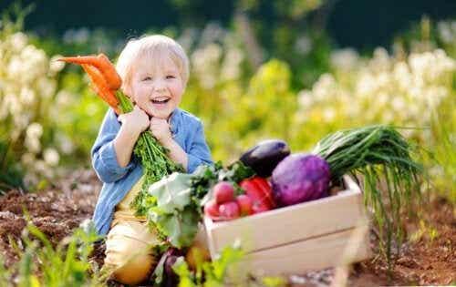 Vegansk diett for babyer: Hva du bør vite